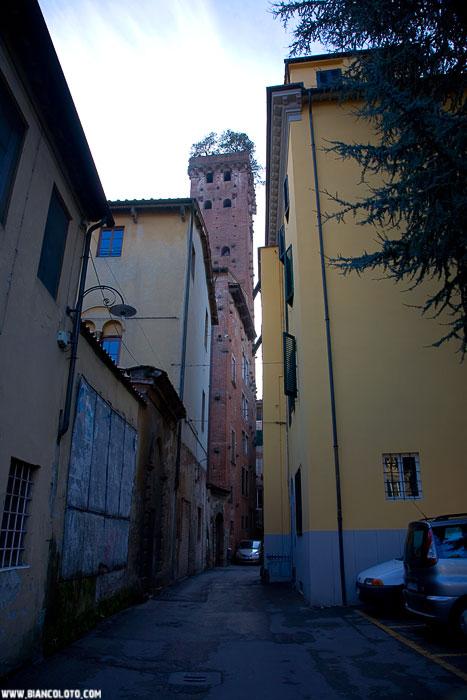 Дворец Гуиниджи и одноименная башня представляют собой изумительный пример средневековой архитектуры Лукки.